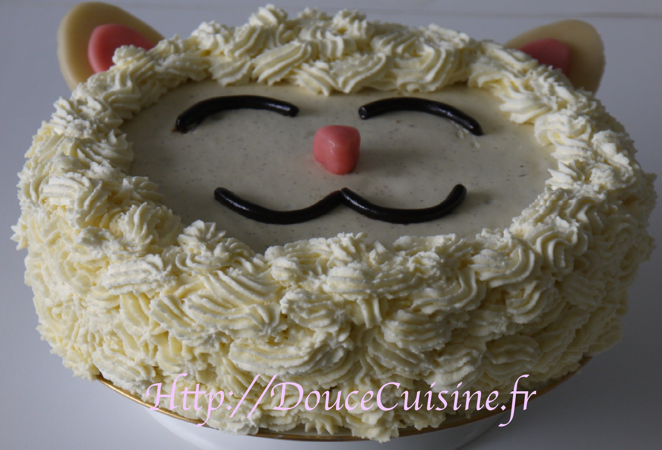 Sponge Cake Et Sa Ganache Montee A La Vanille Douce Cuisine